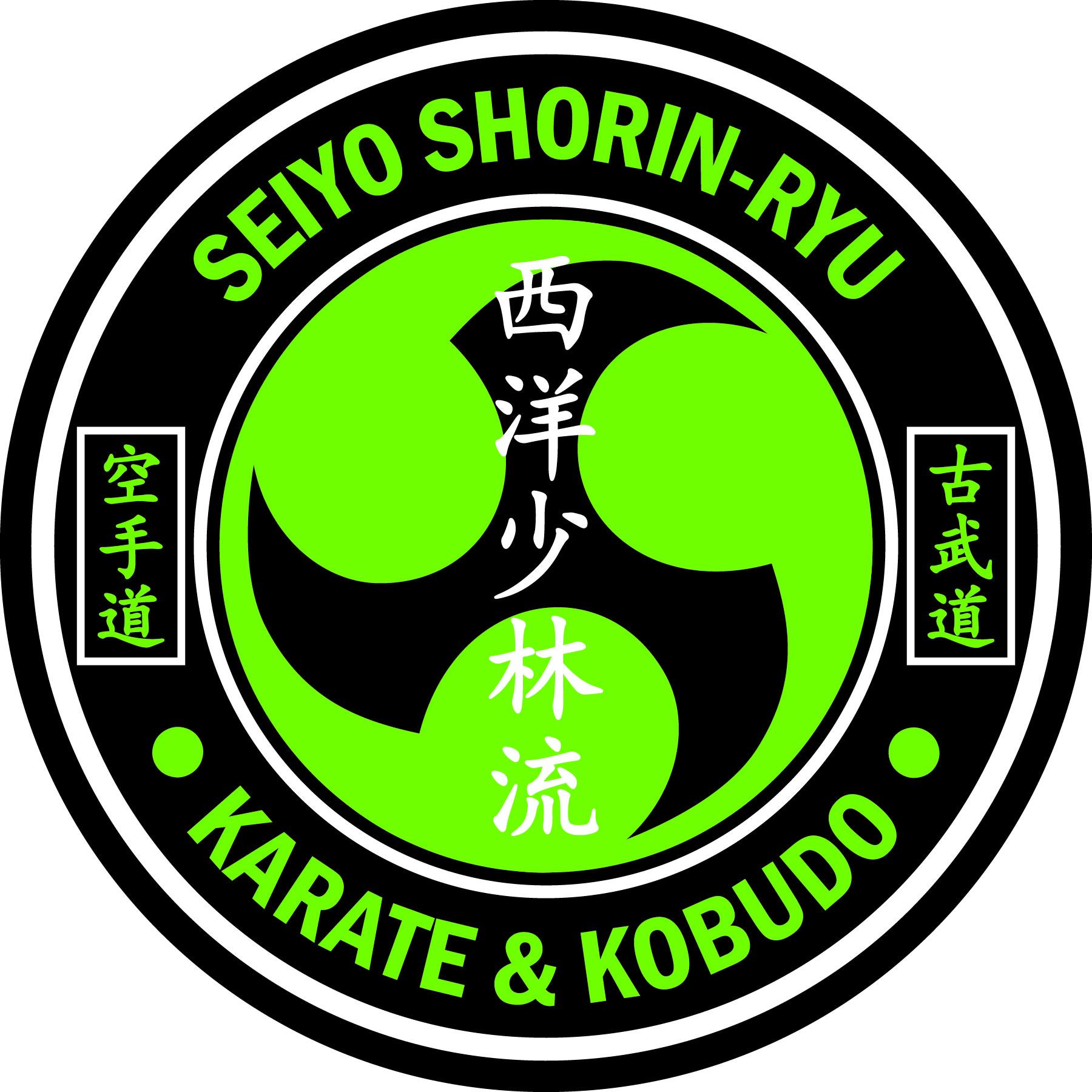 grandmaster arizona school of traditional karate